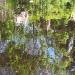 Jardins de Chaumont - Préparation - Couleurs d'été